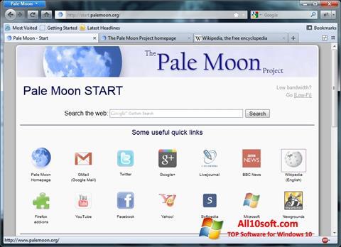 Снимак заслона Pale Moon Windows 10